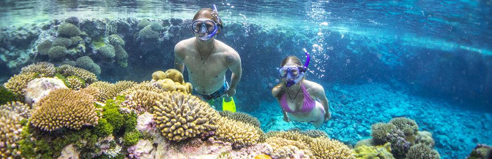 Niue_Snorkelling
