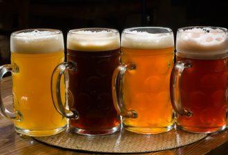 pivo-mini